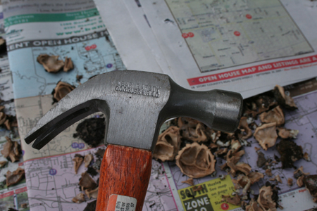 Perfect walnut cracking tool
