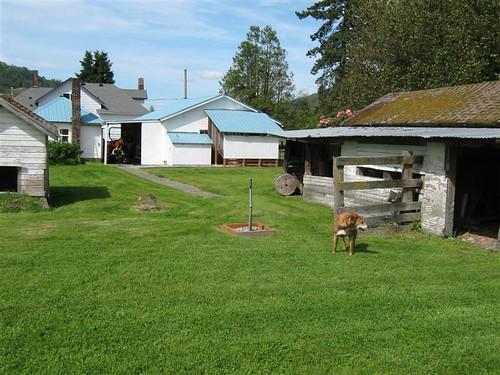 Two chickenhouses may 09 (Medium)