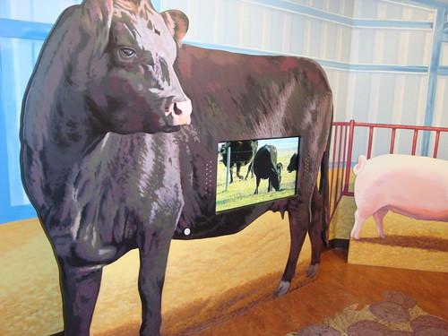 Go have a calf
