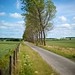 Countryside-20110613-120