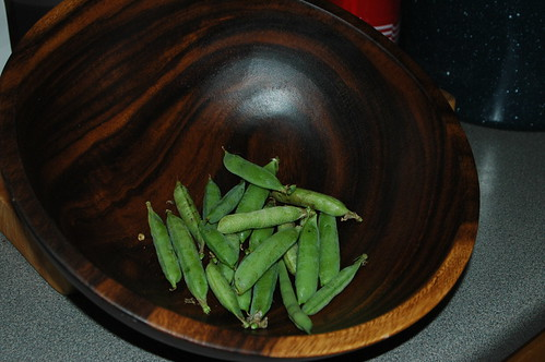 First Pea Harvest