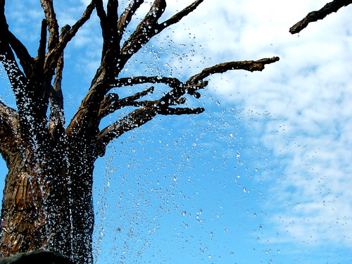 treespray4of4_closest_to_orig
