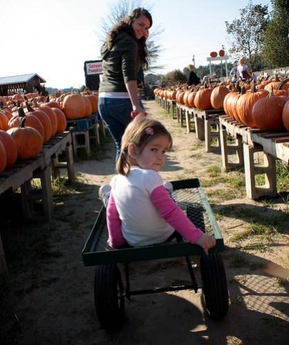 pumpkinpatch (1 of 1)-6