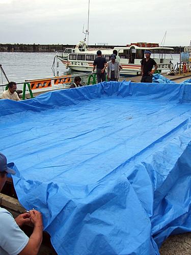 笹川流れ海の縁日」の準備~活魚のつかみ取り