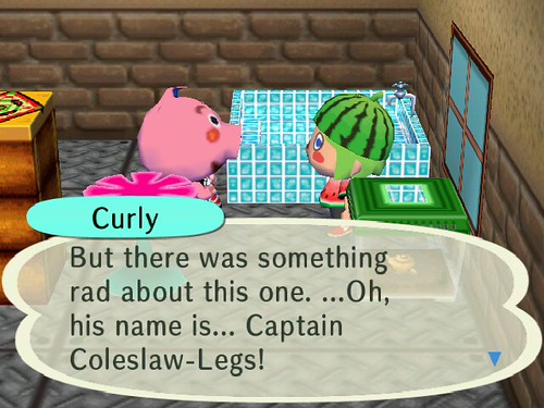 Curlys Pets