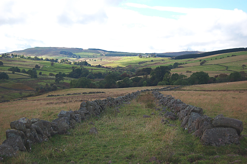 A view from Stoneyinch - west