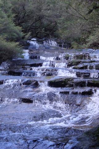 TRAVEL - Leura Cascades