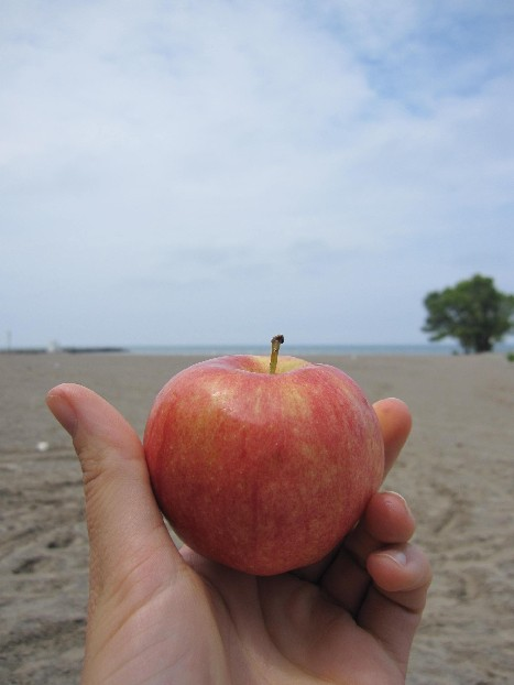apple_with_a_view