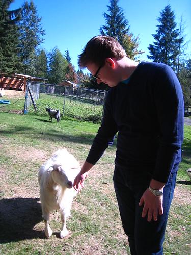 Daniel meets a goat
