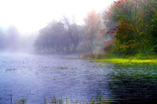The Encompassing Fog of Autumn