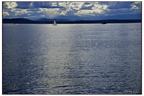 Elliot Bay Seattle