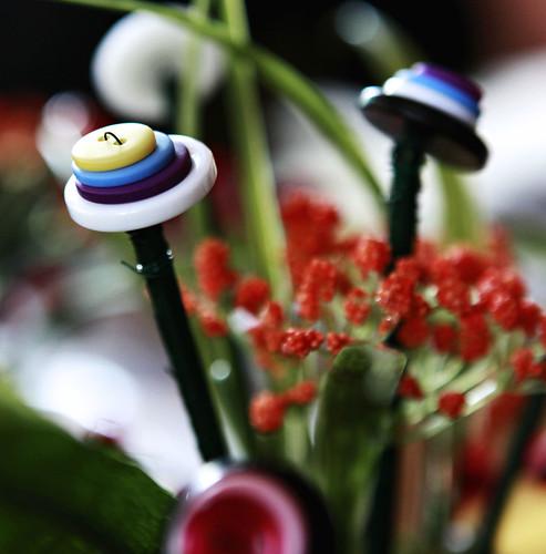 button garden 4