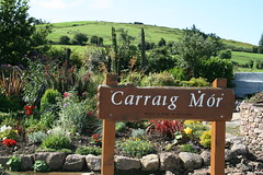 Ardpatrick garden