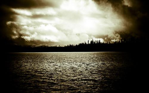 Near Elanore Cove, Yakutat Alaska