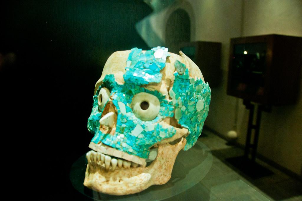 Skull from Monte Alban