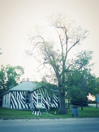 Zebra-striped house in Basset, Nebraska