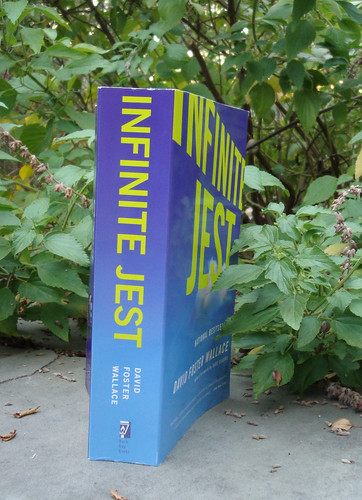 Infinite Summer, Infinite Jest