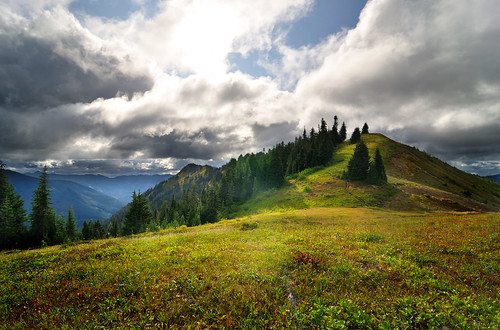 Canyon Ridge, Mt Baker