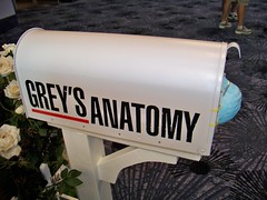 Grey's Anatomy Logo