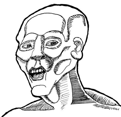 Ani-ano-anatomy, part 7