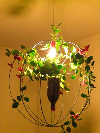 Jardn colgante urbano lmparas vegetales  Tillandsias