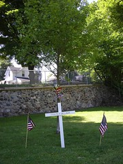Joseph P. Bellavia Memorial Tree