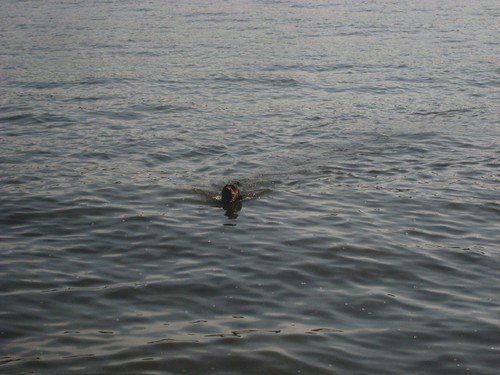 first swim of 2009