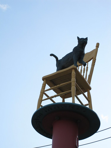 Cat on a Chair, in front of Phở Hung