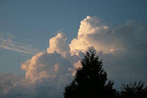 Cumulus congestus cloud