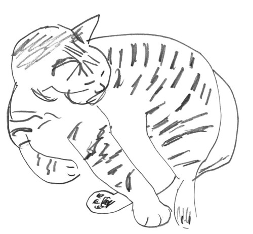 Drawing my cats, part 23