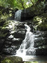 1ª Cachoeira - 3