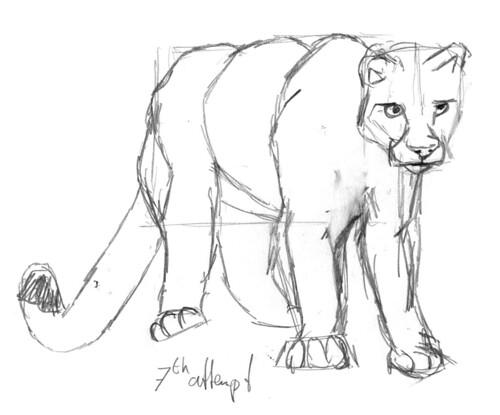 Cougar, part 2