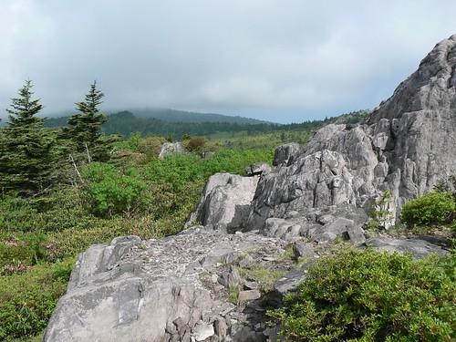 Mount Rogers Backpacking 2009 - Wilburn Ridge Trail - View 2