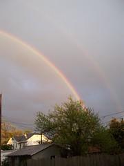 Rainbows over Kellys backyard recently