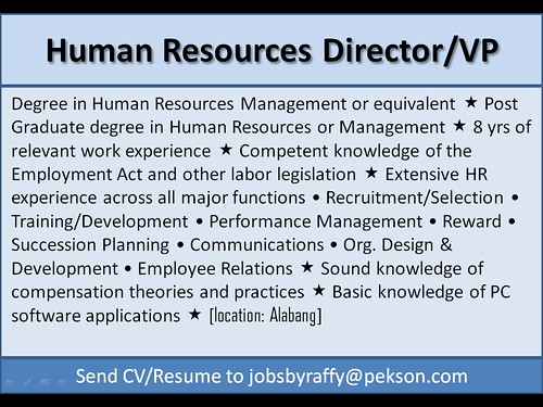 Human Resources Director / VP