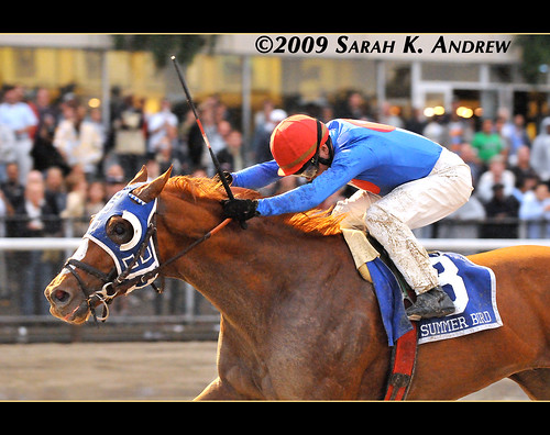 Summer Bird and Kent Desormeaux win the Grade 1 Jockey Club Gold Cup