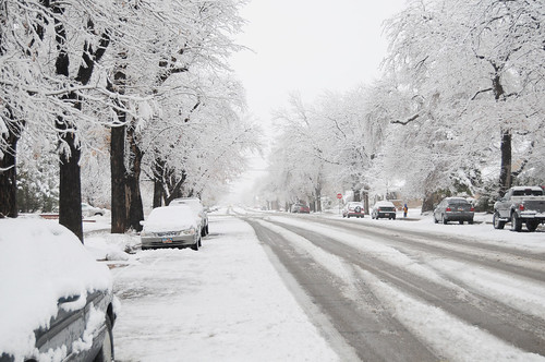 Snow -- 30 Days of Gratitude