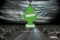 Redesma - Pine