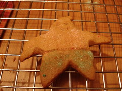 Patrick Starfish cookie
