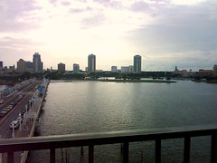 From the Pier, St. Petersburg, FL