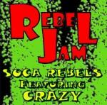 Cover: Soca Rebels feat. Crazy - Rebel Jam