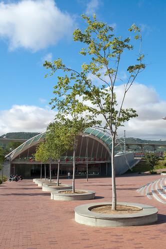 Árboles en la estación de la Garena