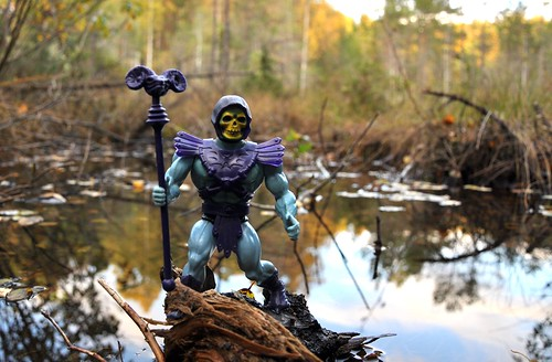 Skeletor, by the swamp