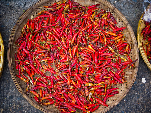 Chilis Drying in the Sun
