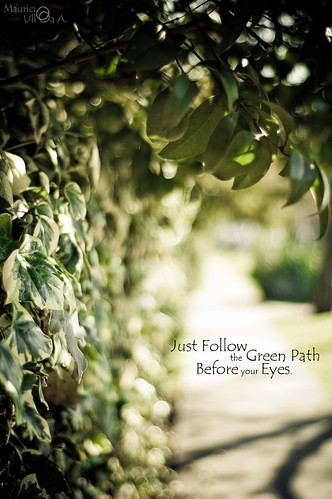 Just Follow the Green Path Before your Eyes.