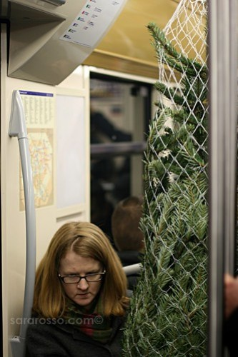Bringing home a Christmas tree on the Paris Metro, France
