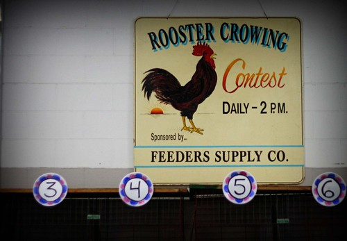 Kentucky State Fair: Roosters