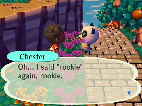 Meet Chester!