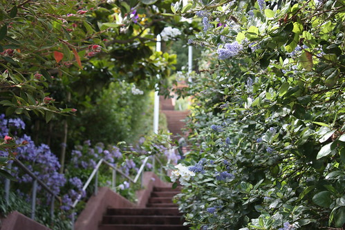 Hidden stairway