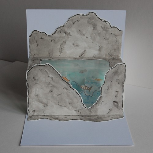 rockpool - pop up drawing